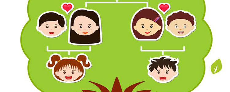 3 simple steps to find your family tree latest news