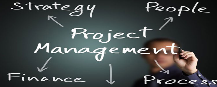 importance-project-management-within-company
