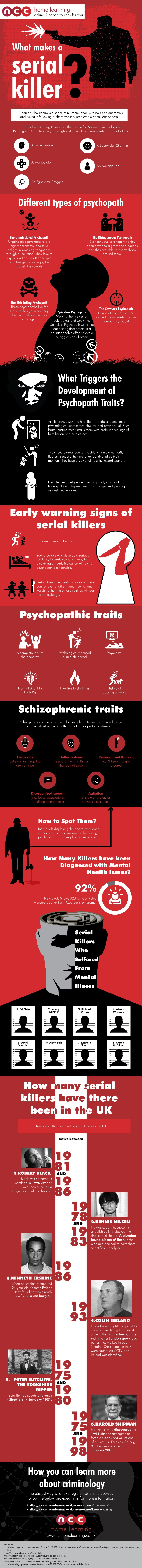 What makes a serial killer infographic