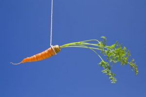carrot dangling from a string