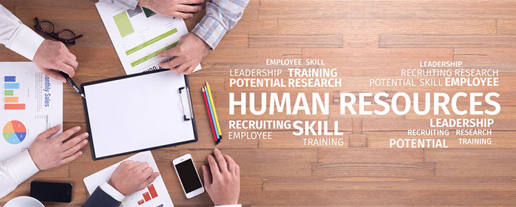 Human Resources (HR) Manager