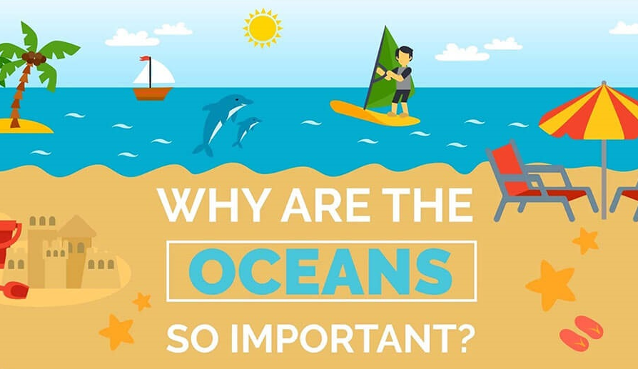 Why Are Oceans So Important Infographic