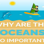 Why Are The Oceans So Important